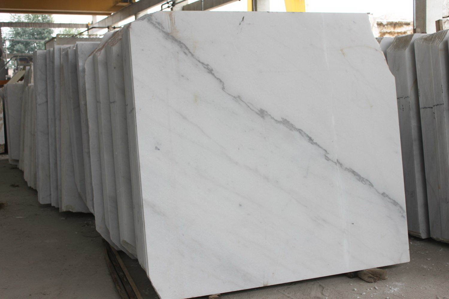 Guangxi White Marble-Arabescato  (9)